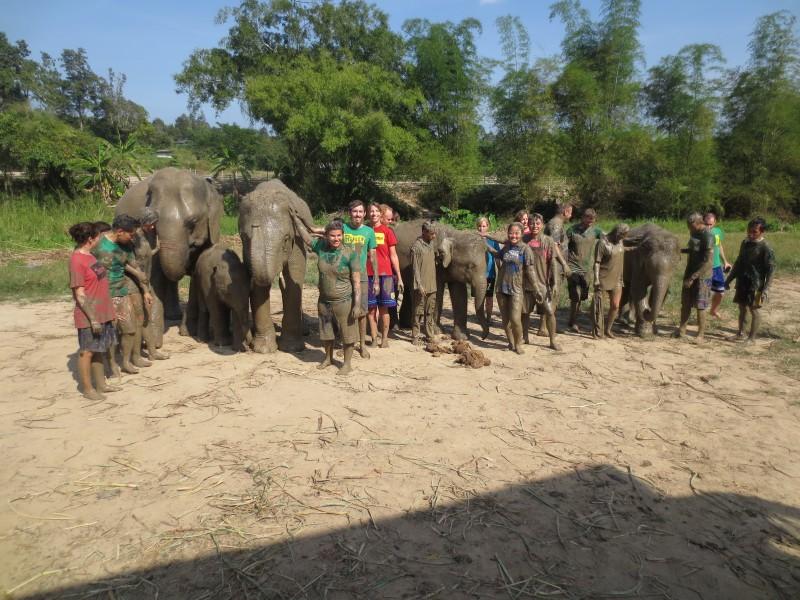guerra-lama-elefantes